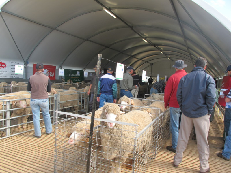 On property ram sale 2011